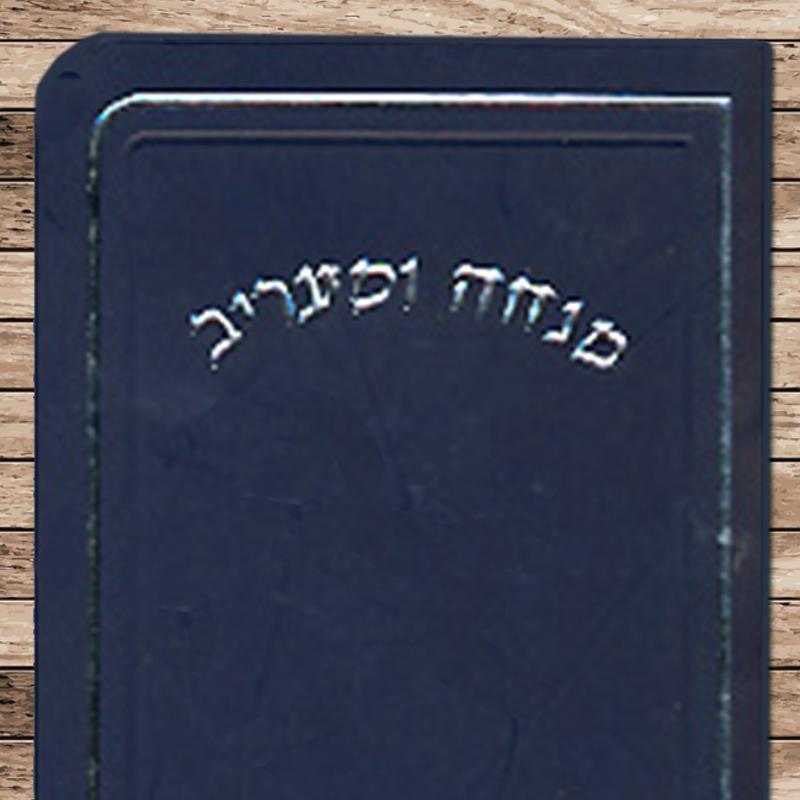Mini Sized Mincha-Ma'ariv